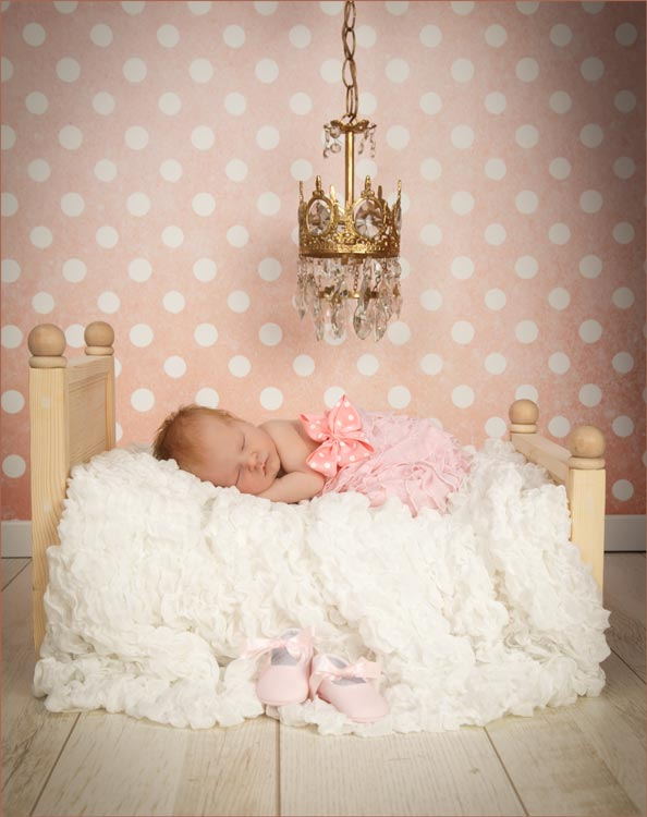 newborn photography venice fl