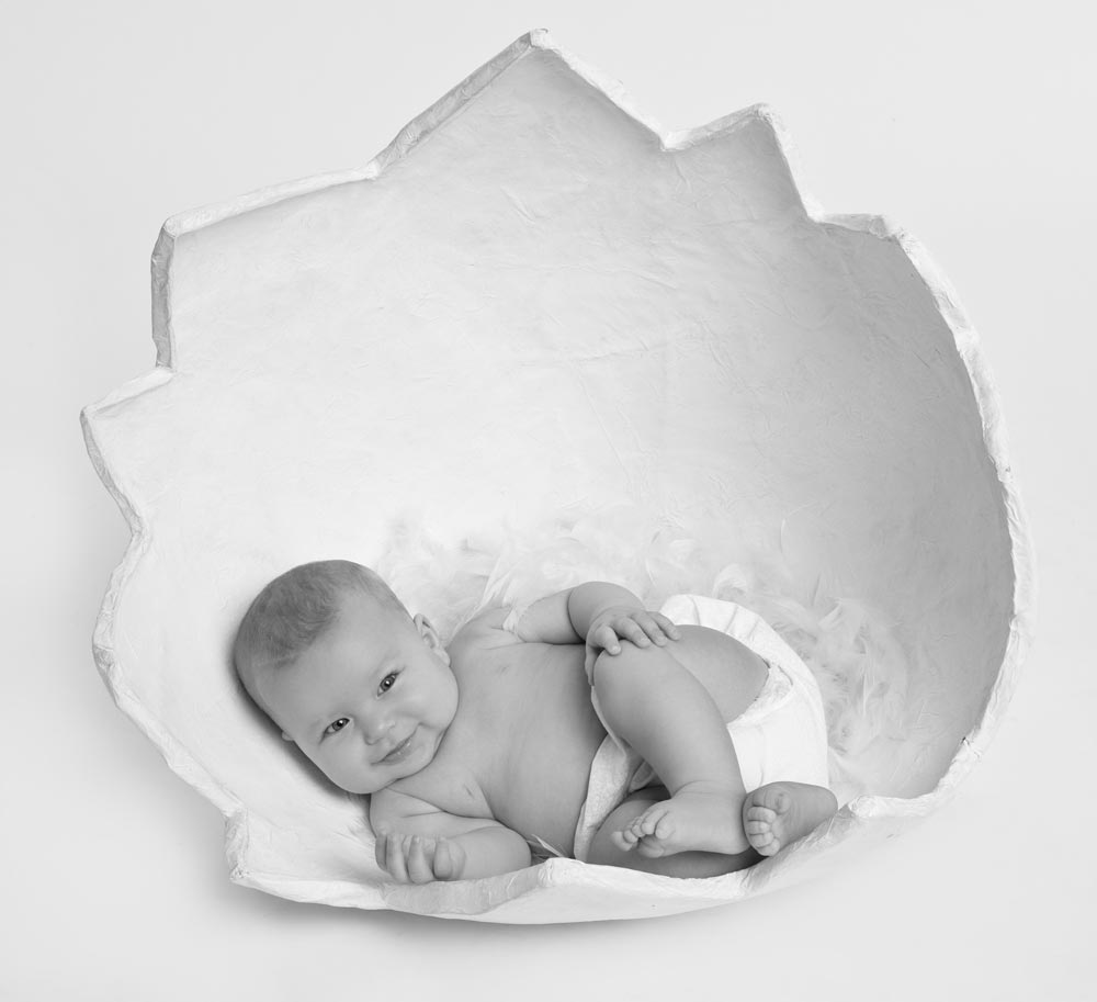 newborn photography north port