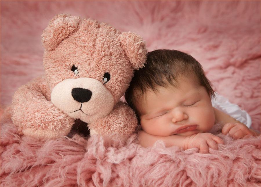 newborn portrait venice fl