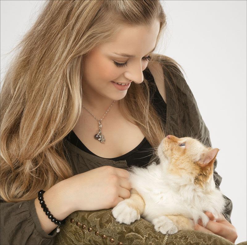 cat photography venice fl
